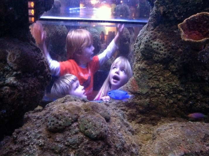 Kids IN the aquarium