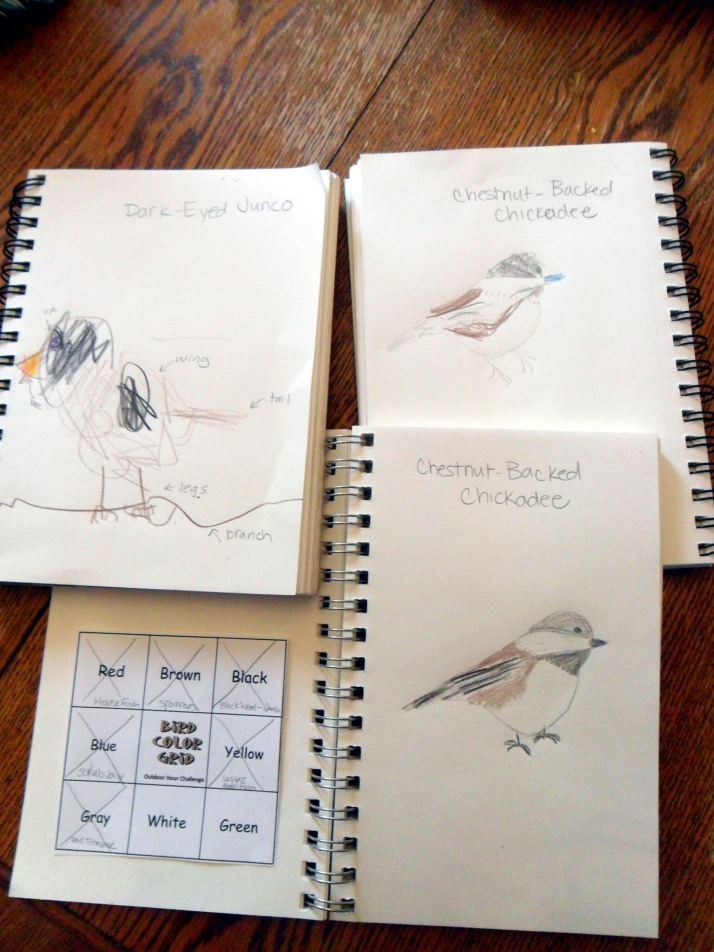 Our Journal Entries and Bird Grid