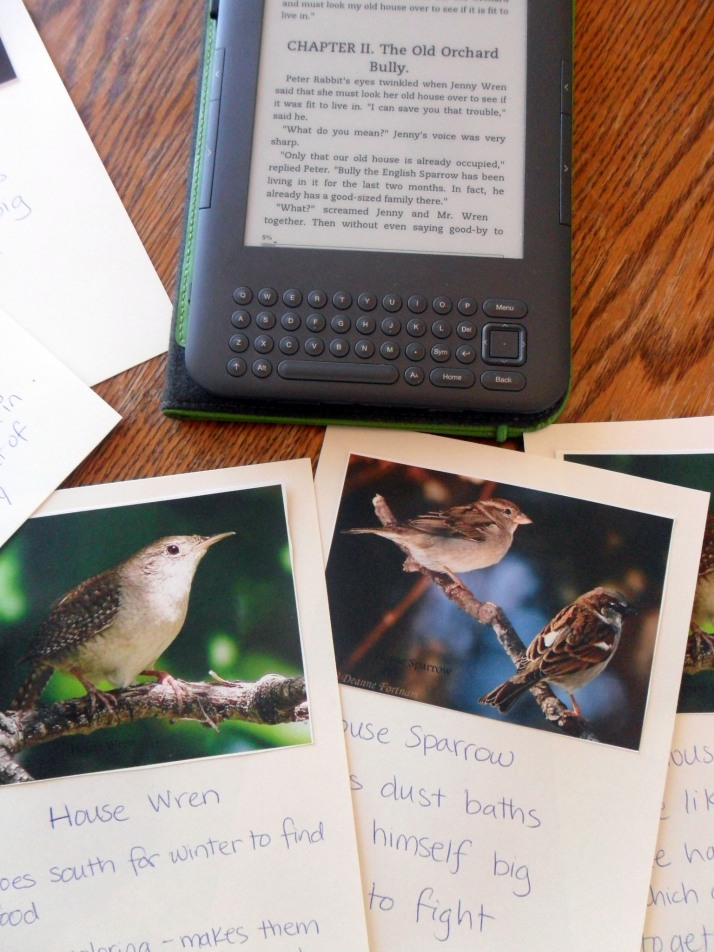 Our Burgess Bird Book Project