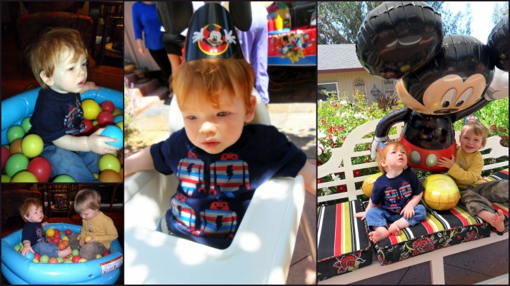 Happy 1st Birthday Shortstop!