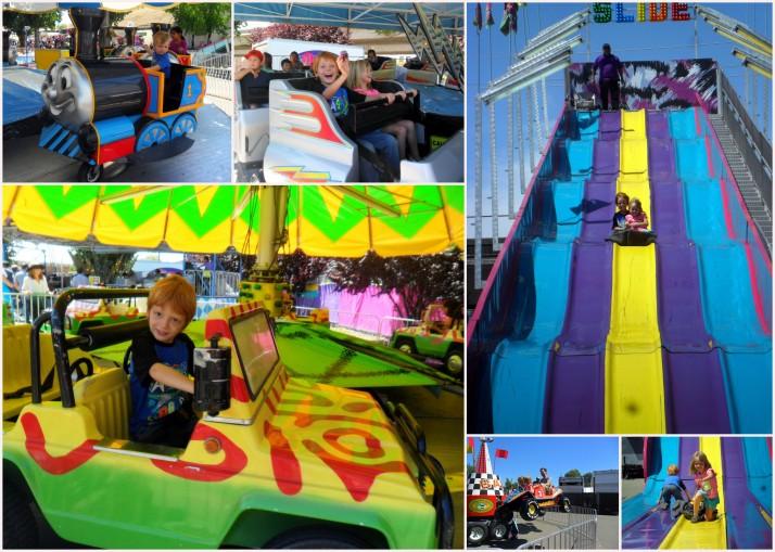 Sonoma County Fair4