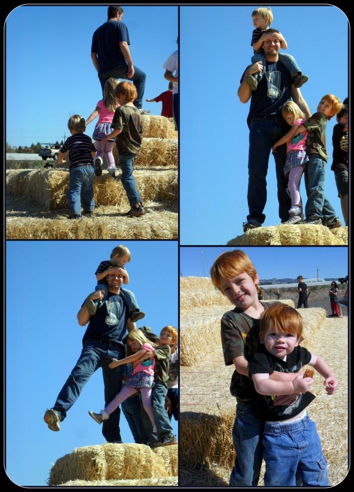 Climbing the Hay