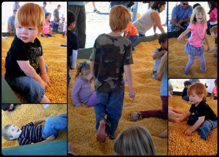 5 Corn Kernel Sandbox