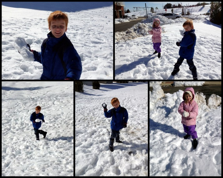 More snow fights