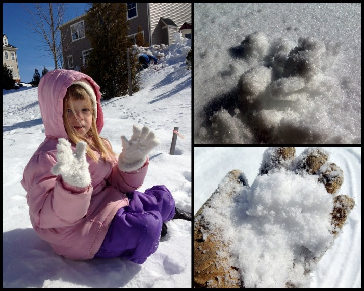 3 Snow Play5