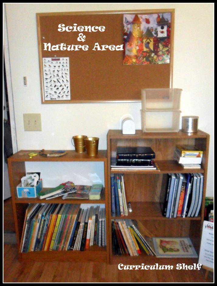 6 Shelves