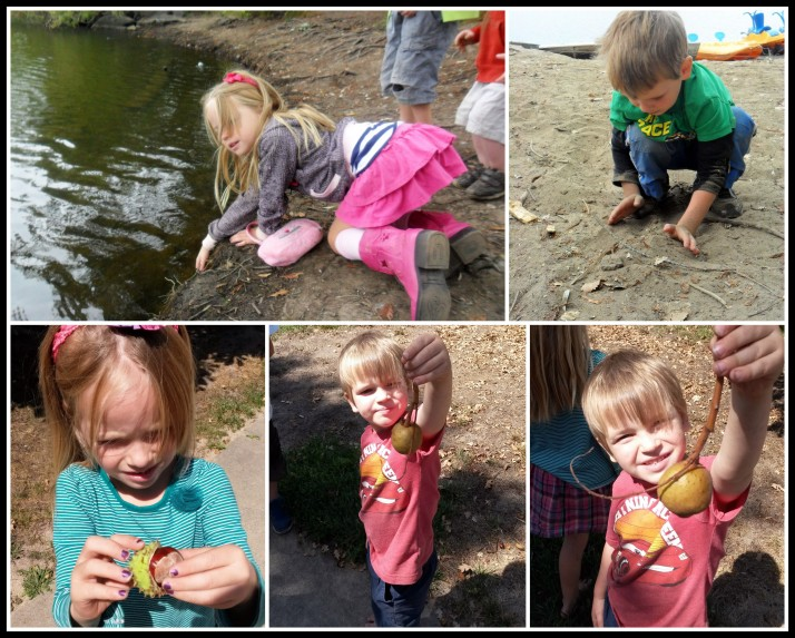 Nature walks provide ample opportunity for hands on learning