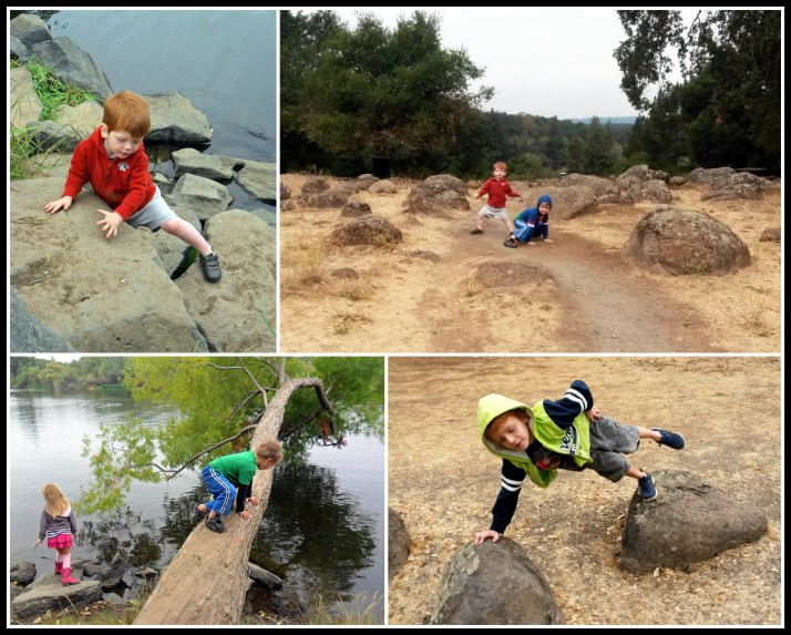 Nature walk incorporates all the learning styles, including Kinesthetic-Tactile Whole Body