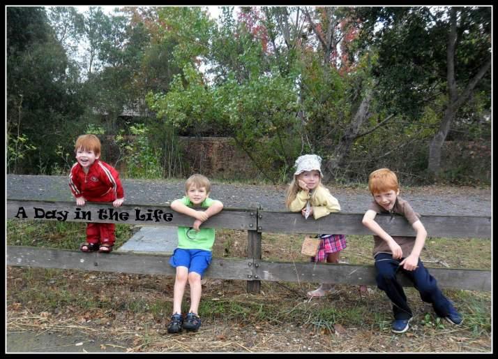 Kids on a fence