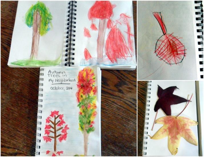 Nature Study3